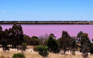 Jezioro Hillier