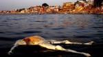 Varanasi – najbardziej obłąkane miasto świata.