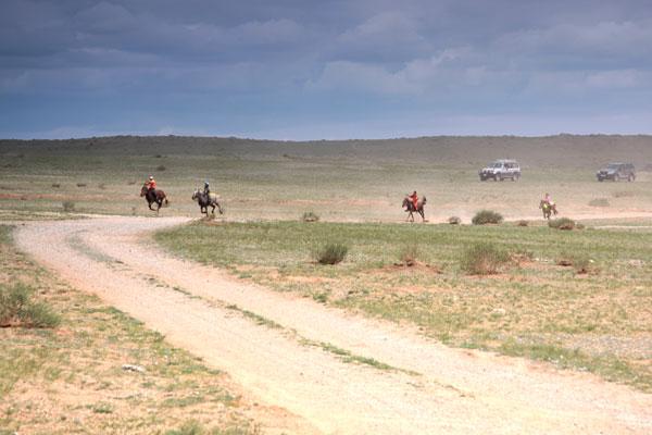 mongolski koń
