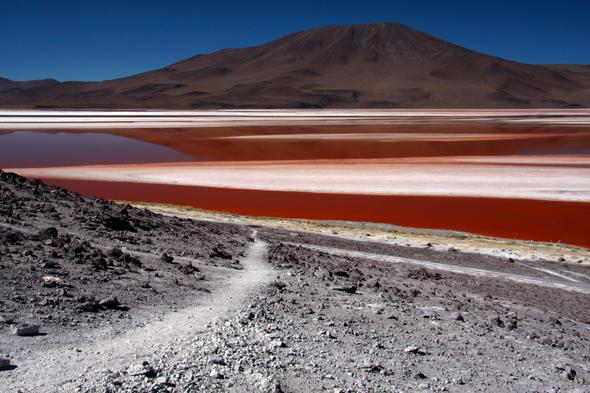Wybarwiona na czerwono skorupiakami tafla laguny Colorada uwodzi niezmiennie za każdym łypnięciem nań oczami.
